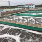 Sự phát triển công nghệ xử lý nước thải ở Việt Nam trong những năm qua